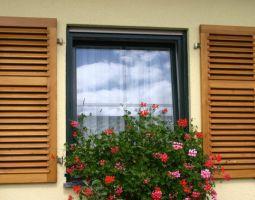 Holzfenster mit Sprossen und Holzklappladen